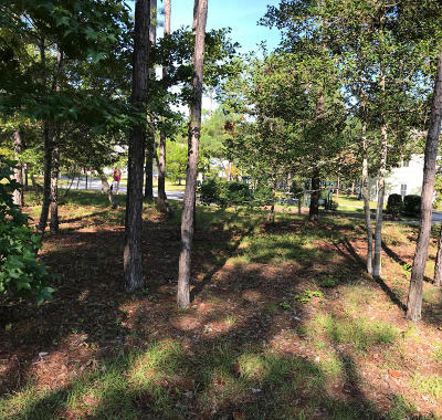 Shallotte Residential Lots & Land For Sale: 53a, 53b Sanguine Street SW