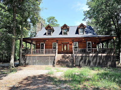 Castle Hayne, Burgaw, Rocky Point Single Family Home For Sale: 901 Riverview Drive