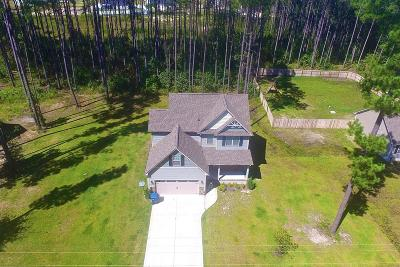 Jacksonville Single Family Home For Sale: 1386 Gould Road