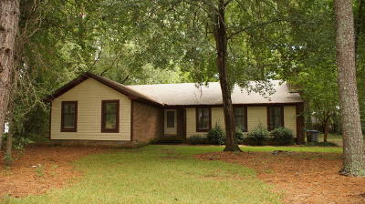 Rocky Mount Single Family Home For Sale: 3617 Litchfield Drive