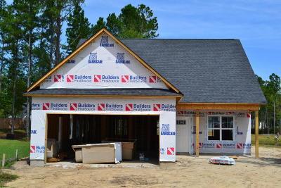 Castle Hayne, Burgaw, Rocky Point Single Family Home For Sale: 45 Beltsville Court