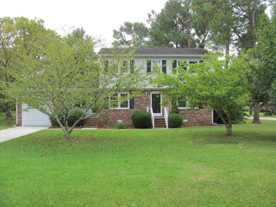 Beaufort Single Family Home For Sale: 113 Pleasant Drive