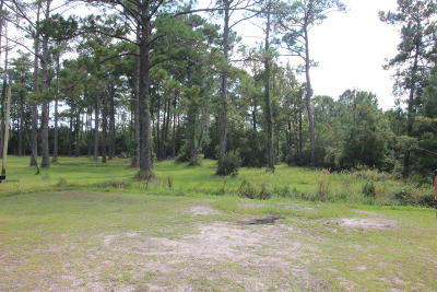 Davis Residential Lots & Land For Sale: 169 Croaker Street