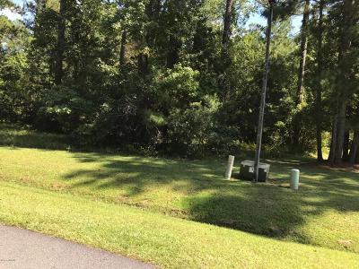 Beaufort Residential Lots & Land For Sale: 107 Cummins Creek Road