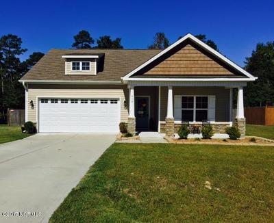 Hubert Single Family Home For Sale: 418 Peppermint Drive