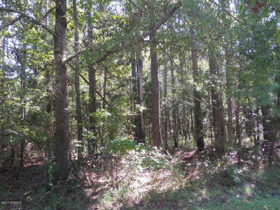 Beaufort Residential Lots & Land For Sale: 209 Thurman Road
