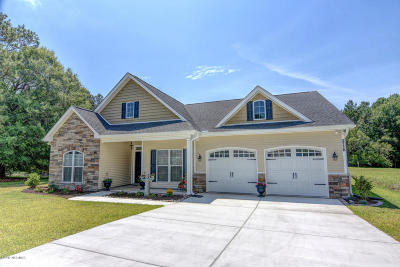 Castle Hayne, Burgaw, Rocky Point Single Family Home For Sale: 17 Holland Drive