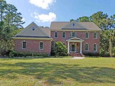 28451 Single Family Home For Sale: 10193 Vandorn Court SE