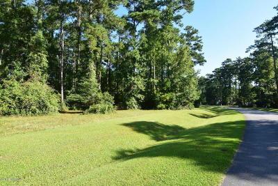 Beaufort Residential Lots & Land For Sale: 130 Cummins Creek Road