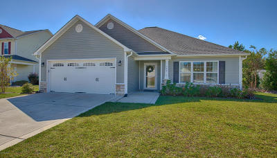 Swansboro Single Family Home For Sale: 704 Meeting Park Lane