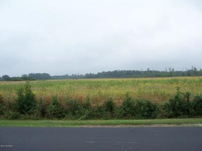 Greenville Residential Lots & Land For Sale: County Home Road