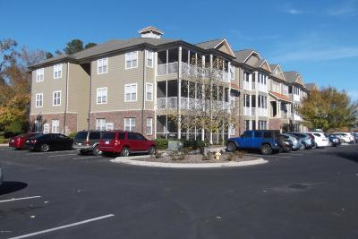 Crow Creek Condo/Townhouse For Sale: 395 S Crow Creek Drive #1501