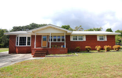 Wilmington Single Family Home For Sale: 219 Woodland Drive