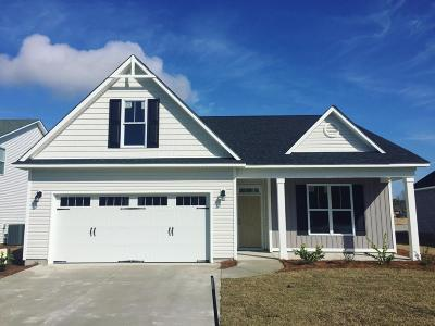 Wilmington Single Family Home For Sale: 364 Lehigh Road