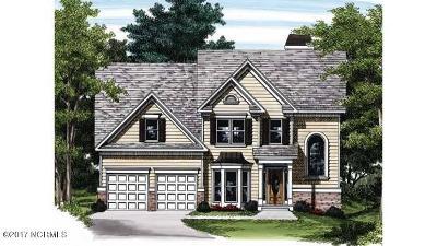 Castle Hayne, Burgaw, Rocky Point Single Family Home For Sale: Lot 38 River Landing