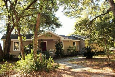Shallotte Single Family Home For Sale: 1484 Magnolia Street SW