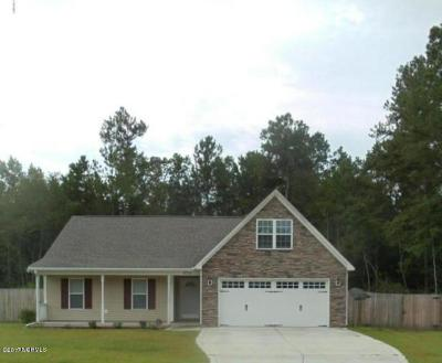 Jacksonville Single Family Home For Sale: 273 Blue Creek Farms Drive