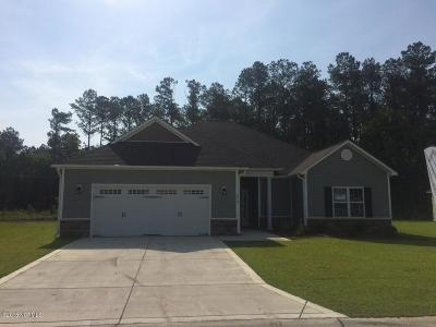 Jacksonville Single Family Home For Sale: 232 Wood House Drive