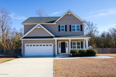 Jacksonville Single Family Home For Sale: 226 Blue Creek Farms Drive