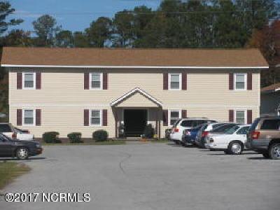 Jacksonville Rental For Rent: 2310 Indian Drive #Apt 19