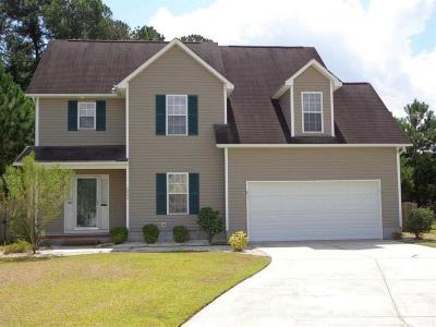 Jacksonville Single Family Home For Sale: 313 Providence Drive