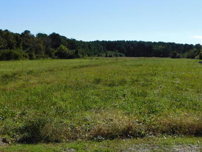 Beaufort Residential Lots & Land For Sale: Live Oak Street/Hwy 70