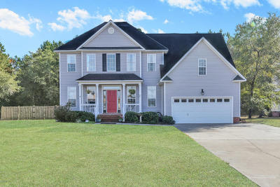 Sneads Ferry Single Family Home For Sale: 462 Chadwick Shores Drive