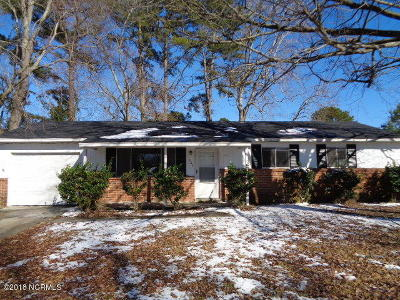 Jacksonville Rental For Rent: 503 Myna Drive