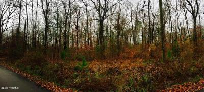 Jacksonville Residential Lots & Land For Sale: 198 Old Beechtree Lane