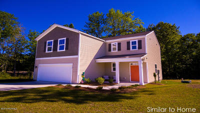 Sneads Ferry Single Family Home For Sale: 206 J Belton Court