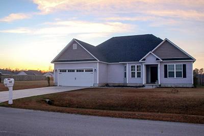 Jacksonville Single Family Home For Sale: 108 Stony Brook Way