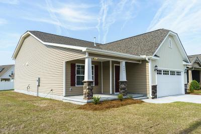 Greenville Single Family Home For Sale: 4001 Bluebill Drive