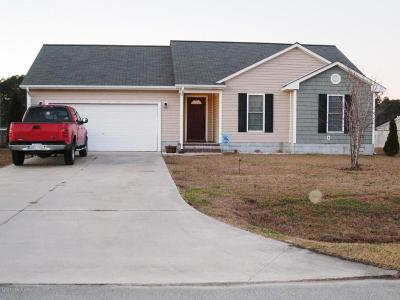Jacksonville Single Family Home For Sale: 304 Murphy Drive