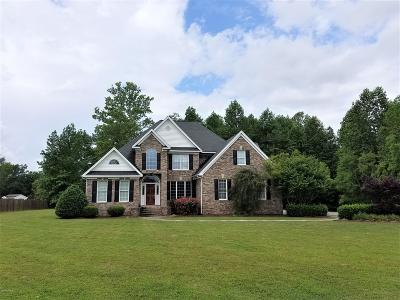 Greenville Single Family Home For Sale: 216 River Branch Road