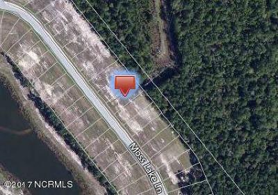 Residential Lots & Land For Sale: 527 Moss Lake Lane