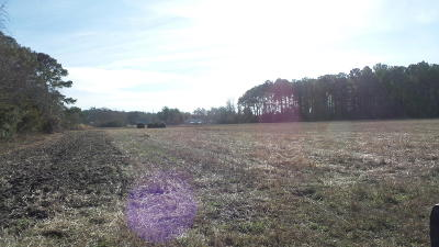 Morehead City Residential Lots & Land For Sale: 5077 Business Drive