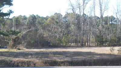 Morehead City Residential Lots & Land For Sale: 5043 Business Drive