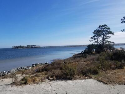 Smyrna Residential Lots & Land For Sale: 235 Lige Piner Road