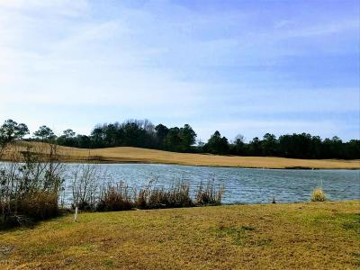 Beaufort Residential Lots & Land For Sale: 212 Taylorwood Drive