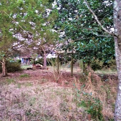 Newport Residential Lots & Land For Sale: 813 Mason Town