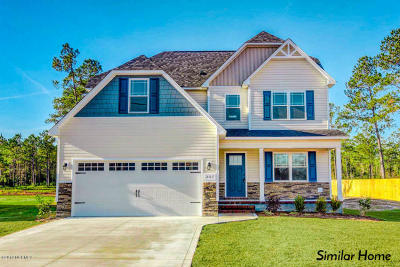 Sneads Ferry Single Family Home For Sale: 137 Bridgeport Drive