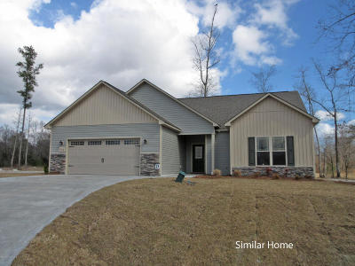 Sneads Ferry Single Family Home For Sale: 133 Bridgeport Drive