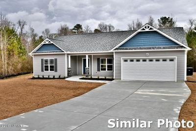 Onslow County Single Family Home For Sale: 103 Ridge View Drive