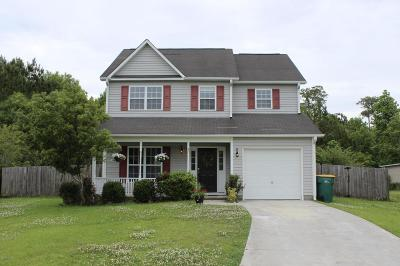 Swansboro Single Family Home For Sale: 211 Ashley Nicole Court