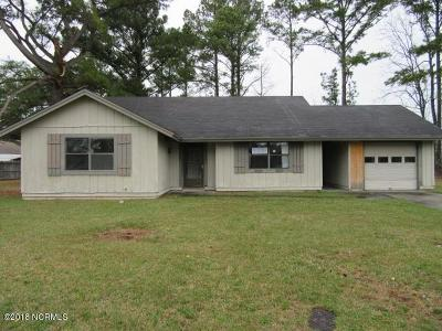 Jacksonville Single Family Home For Sale: 431 Palmetto Court