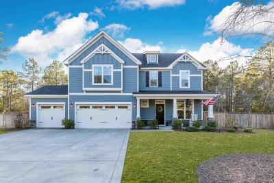 Sneads Ferry Single Family Home For Sale: 110 Snow Goose Lane