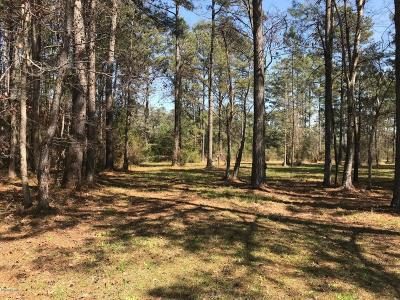 Beaufort Residential Lots & Land For Sale: 101 Hidden Harbor Lane
