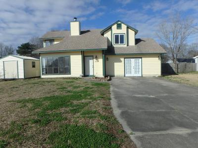 Onslow County Single Family Home For Sale: 1004 Furia Drive