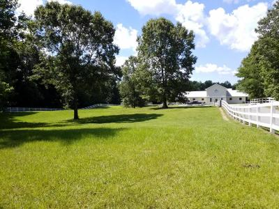 Jacksonville Single Family Home For Sale: 279 Waters Road