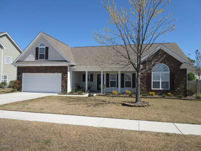 Sterling Farms Single Family Home For Sale: 132 Moonstone Court